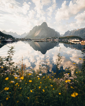 Mountain town reflected in water with wildflowers in foreground
