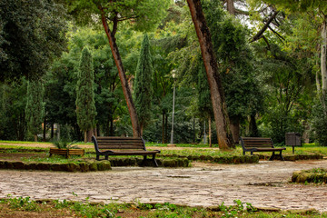 Rainy day at the park in Rome.