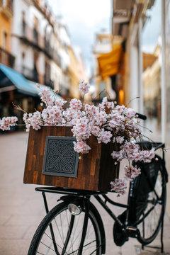 Vintage bicycle with flower