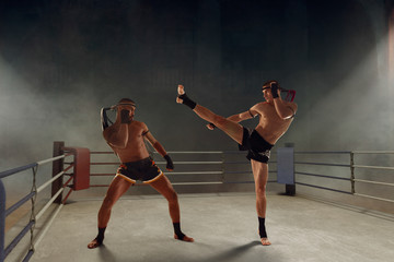 Muay thai, thai boxing fighters