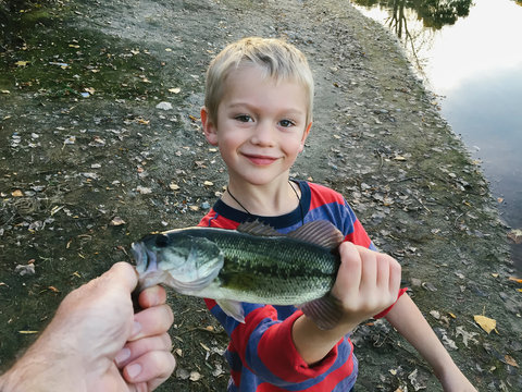 Child holding Fish that he caught while fishing with dad