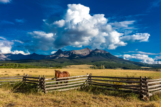 JULY 12, 2018, RIDGWAY COLORADO USA - Horse overlooks worm western fence in front of San Juan Mountains in Old West of Southwest Colorado near Ridgway