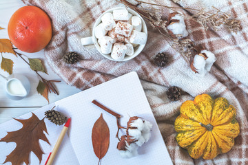 Top view composition with cup of coffee and marshmallow, pumpkin, grapefruit, cotton plant flower branches, notepad