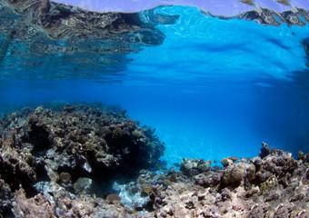 Pristine coral reef coast in Australia