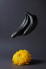 flower and bananas on a black background