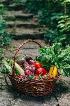 Veggies in a basket