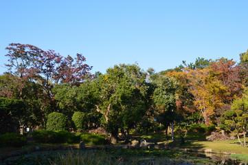 日本庭園の池の周りが紅葉でカラフルになった公園の風景
