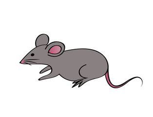 rat cartoon