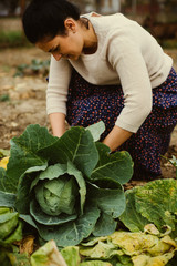 woman holds the cabbage
