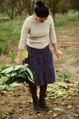 woman cuts the cabbage
