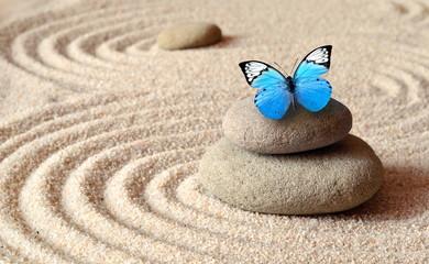 Foto op Plexiglas Stenen in het Zand A blue vivid butterfly on a zen stone with circle patterns in the grain sand.