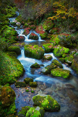 Colorful picturesque autumn landscape of river with small waterfalls and mossy stones