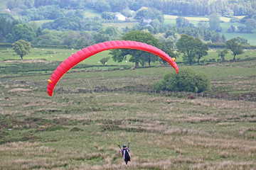 Fototapete - Paraglider coming in to land