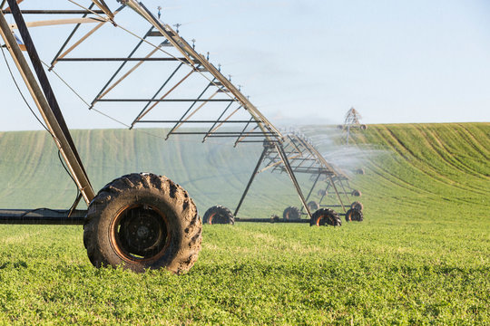 Agricultural sprinkler spraying water on a field