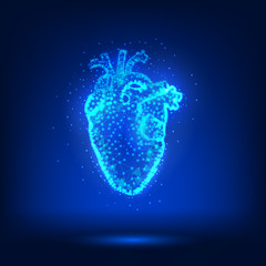 Low poly anatomical human heart on dark background. Polygonal image with dots, lines and triangles. Vector illustration.