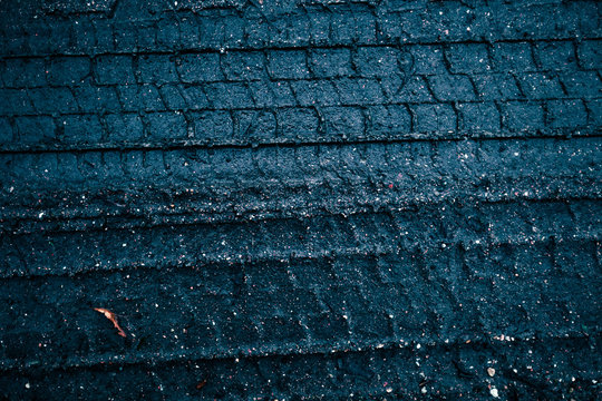 Tire Marks on Damp Dark Soil