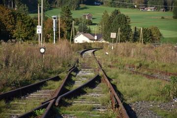 Gleis, Schiene, Schwelle, Normalspur, Holzschwelle, Mutter, Bahnsteig, Weiche, Endstation, Kötschach-Mauthen, Oberkärnten, Stillgelegt, Gailtalbahn, verwachsen,