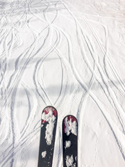 Skis and tracks in snow