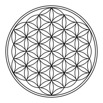 Flower of Life 3d illustration spiritual symbol, Black and White on white background