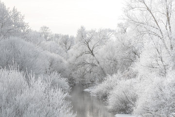 Winter landscape - river and frosty trees on shore