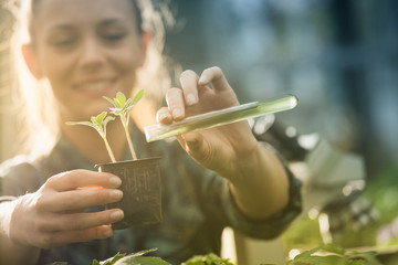 Farmer woman pouring chemicals in seedling