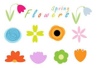 Spring flowers collection isolated on the white background. Vector illustration.
