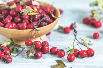 Autumn harvest Hawthorn berry with leaves in bowl on a light wooden table background