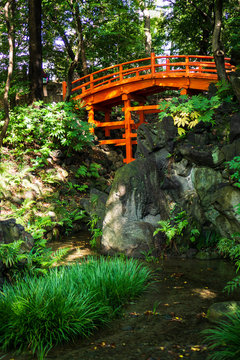 Traditional Japanese red bridge and pond in Japanese garden