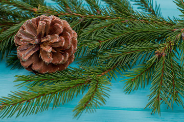 Close up of fir tree branch with cone. Green spruce twig with cone on blue background. Natural winter background.