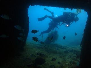 Scuba Diving Malta -  - HMS Maori, Valletta