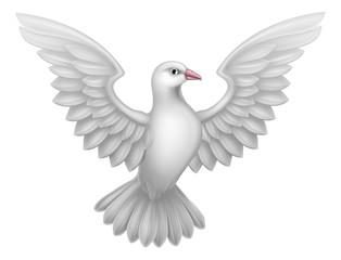 A white dove, a symbol of peace, faith or hope