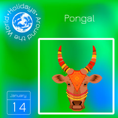 Maatu Pongal. Hindu harvest festival in India and Sri Lanka. The head of a cow. Calendar. Holidays Around the World. Event of each day. Green blur background - name, date illustration