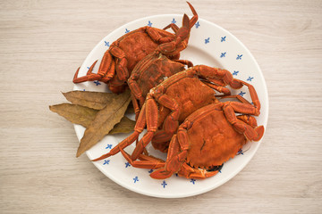 Cooked crabs on a plate accompanied by bay leaves