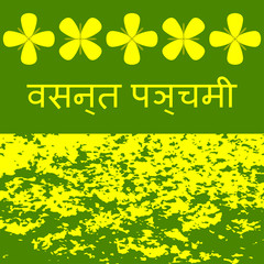 Vasant Panchami. Concept Indian religious festival. Mustard flowers, mustard field, name of the holiday in Hindi.