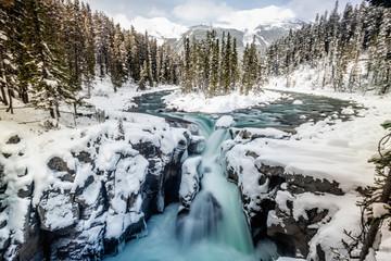Garden Poster Scandinavia Banff National Park