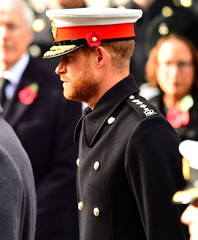 Britain's Prince Harry attends a National Service of Remembrance, on Remembrance Sunday at The Cenotaph in Westminster, London