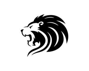 lion 18