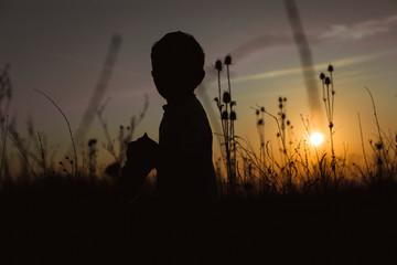 Sunset field. Boy posing