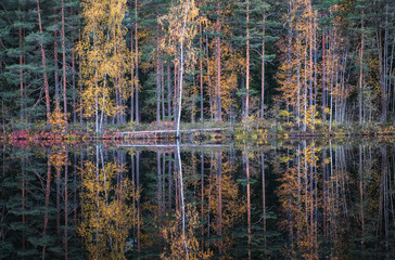 Beautiful water reflection view with fall colors and lake at autumn day in Finland.