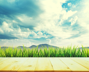 wood textured backgrounds and sky field backgrounds