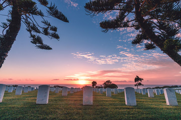 Fort Rosecrans National Cemetery, Point Loma, San Diego, California, USA Wall mural