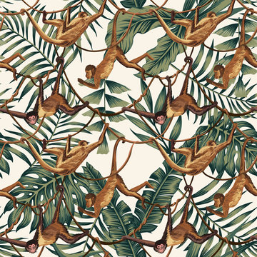 Monkeys on creepers on the tropical leaves background