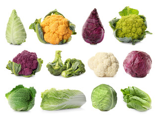 Set with different types of cabbage on white background