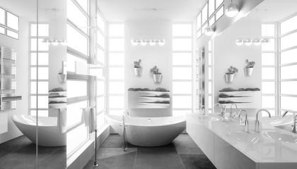 Contemporary Bathroom Adaptation