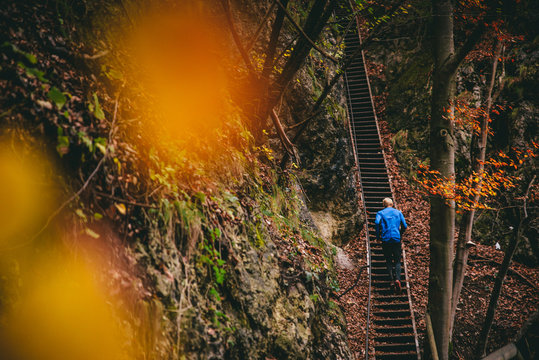 Athlete running on stairs in autumn forest