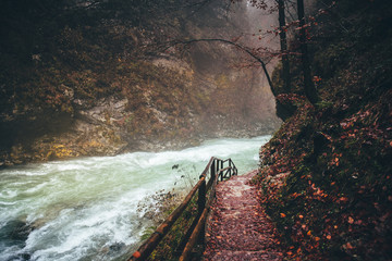 Wonderful Vintgar Gorge canyon at curlicue river and beautiful autumn colors and close to Lake Bled in Slovenia,Europe