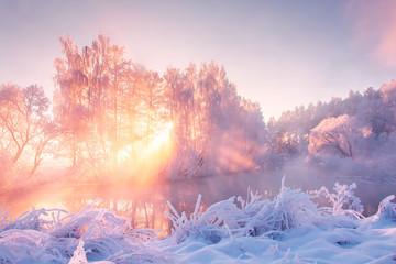 Winter nature landscape in pink morning sunlight