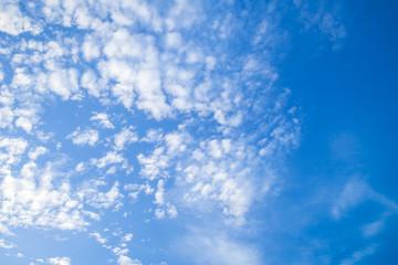 Altocumulus, white clouds in blue sky