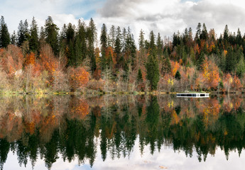 Wall Mural - fall color forest and foliage landscape surround an idyllic mountain lake in the Alps of Switzerland on a late autumn day with reflections in the water and a wooden swimming raft in the center