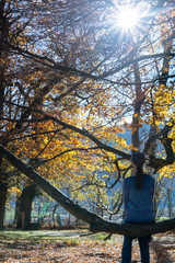 woman hiker sitting on a large branch of an old oak tree in a fall forest landscape and enjoying the peace and quiet of nature